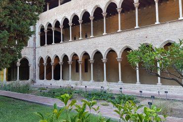 Jardí medicinal del claustre del monestir de Pedralbes