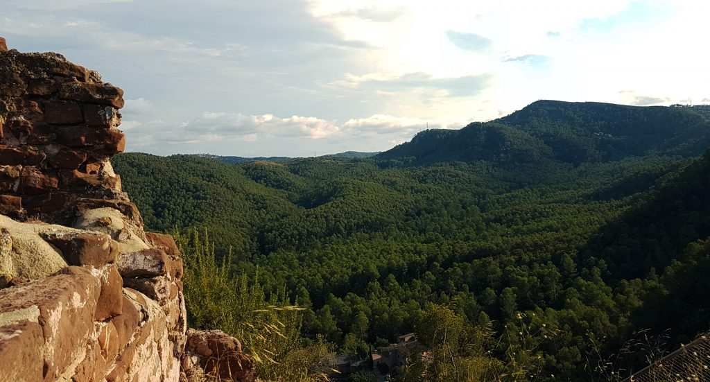 Vall de Can Sala de Baix, antigament Vall de la Santa Creu, vista de la torre de l'homenatge estant